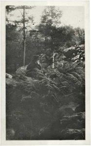 Straub/Huillet/Cézanne. Seelen malt man nicht